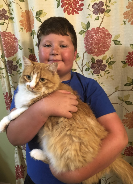Leo White - Overall Grand Champion Cat 2019