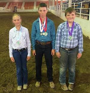 4-H State Horse Judging Contest 2018