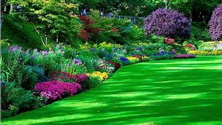 Lawn and garden colorful